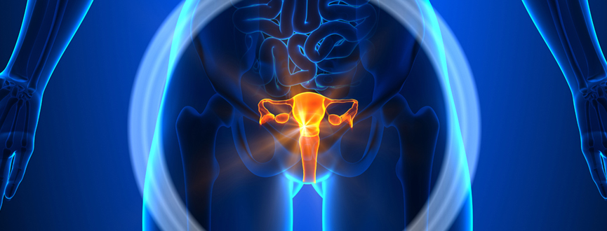 Gynecological Oncology Cancer Center in Dubai