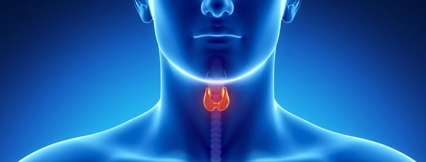 Thyroid Cancer in Dubai